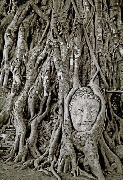 Buddha remains, Ayutthaya, Thailand (1997) Photo (c) Karen Abrahamson