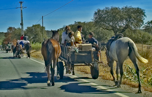 Gypsies along the road in the Alentejo
